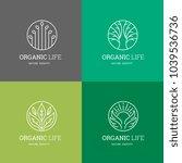 organic life logo set  graceful ... | Shutterstock .eps vector #1039536736