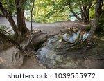 plitvice waterfall croatia | Shutterstock . vector #1039555972