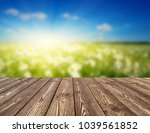 field of daisies  blue sky and... | Shutterstock . vector #1039561852
