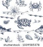sea inhabitants sketch.... | Shutterstock .eps vector #1039585378