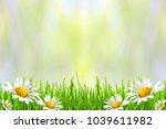 spring or summer abstract...   Shutterstock . vector #1039611982