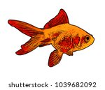 gold fish illustration   vector | Shutterstock .eps vector #1039682092