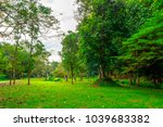 short green glass and beautiful ...   Shutterstock . vector #1039683382