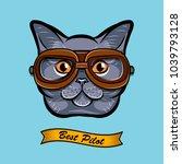 cute pilot cat face traveler... | Shutterstock . vector #1039793128