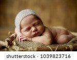 baby  newborn  fur  skin care... | Shutterstock . vector #1039823716