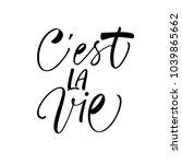 c'est la vie phrase. it's life... | Shutterstock .eps vector #1039865662