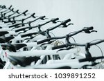 modern bicycles rental shop. | Shutterstock . vector #1039891252