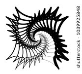 contour lines of overlapping... | Shutterstock .eps vector #1039925848