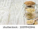 brown and green buckwheat in... | Shutterstock . vector #1039942846