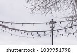 typical italian lantern... | Shutterstock . vector #1039951798