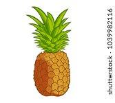 whole fresh pineapple | Shutterstock .eps vector #1039982116