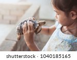 Stock photo cute asian child girl holding and playing with turtle with curious and fun she is not scared to 1040185165