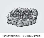 hand drawn gray scale vector... | Shutterstock .eps vector #1040301985