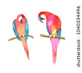 colorful parrot couple.... | Shutterstock .eps vector #1040334496