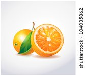 orange fruit | Shutterstock .eps vector #104035862