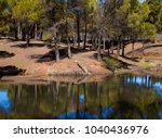 Small photo of Gran Canaria, Las Cumbres, the highest areas of the island are full of temporary streams after rains