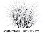branches on a white background. | Shutterstock . vector #1040497495