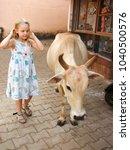 little girl  beautiful cow   Shutterstock . vector #1040500576