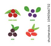set  collection of vector berry ... | Shutterstock .eps vector #1040566732