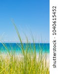 blue water and beach grass ... | Shutterstock . vector #1040615452