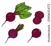 set of beet   beetroot with top ... | Shutterstock .eps vector #1040631472