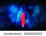3d illustration human vertebral ... | Shutterstock . vector #1040633422
