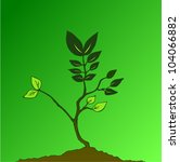 a recently planted tree showing ... | Shutterstock .eps vector #104066882