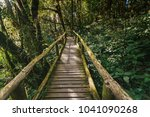 wooden footpath in the forest... | Shutterstock . vector #1041090268