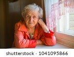 portrait of an elderly woman... | Shutterstock . vector #1041095866
