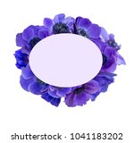 anemone bouquet with frame | Shutterstock . vector #1041183202