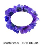 anemone bouquet with frame | Shutterstock . vector #1041183205