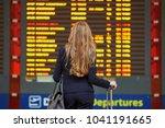 young elegant business woman...   Shutterstock . vector #1041191665