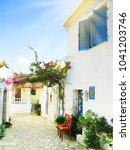 traditional street and houses... | Shutterstock . vector #1041203746