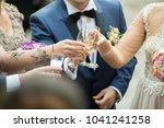clinking glasses at wedding... | Shutterstock . vector #1041241258