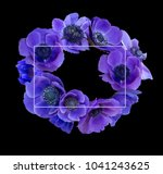 violet anemone bouquet on black ... | Shutterstock . vector #1041243625