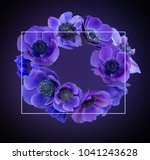 violet anemone bouquet on black ... | Shutterstock . vector #1041243628