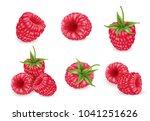 raspberry vector icons set.... | Shutterstock .eps vector #1041251626