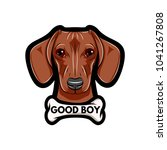 portrait of dachshund dog with... | Shutterstock .eps vector #1041267808