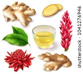 realistic ginger root with red... | Shutterstock .eps vector #1041276946