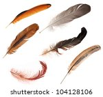 six feathers isolated on white... | Shutterstock . vector #104128106