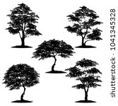 tree silhouette isolated on... | Shutterstock .eps vector #1041345328