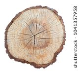 tree stump texture backgroung... | Shutterstock . vector #1041357958