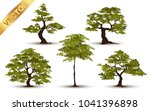 beautiful tree realistic  on a... | Shutterstock .eps vector #1041396898