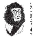 vector portrait of monkey with... | Shutterstock . vector #1041418462