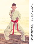 little boy doing karate poses... | Shutterstock . vector #1041496648