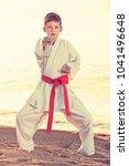 little boy doing karate poses... | Shutterstock . vector #1041496648