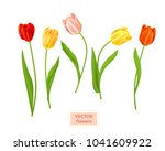 isolated tulips flowers set | Shutterstock .eps vector #1041609922