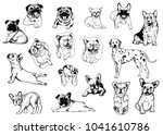 set of hand drawn sketch style...   Shutterstock .eps vector #1041610786