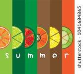 vector of summer fruit slice... | Shutterstock .eps vector #1041684865