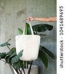 hand holding white blank linen... | Shutterstock . vector #1041689695